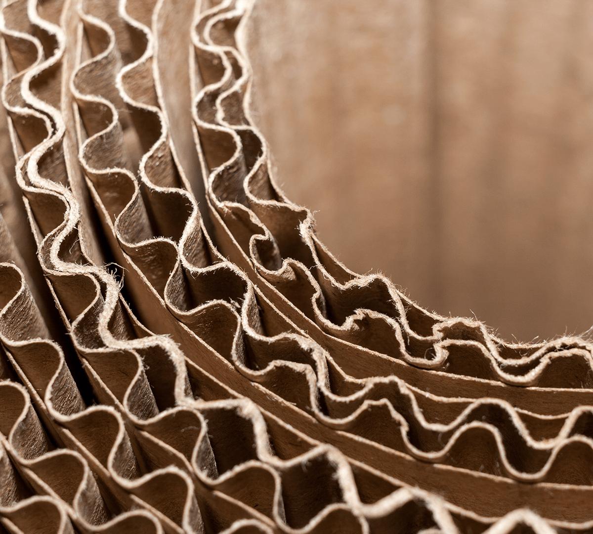 Webinar   Economics for Digital Corrugated Packaging