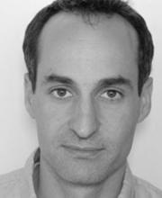 Dr Reinhard Stidl - Safetree Consulting
