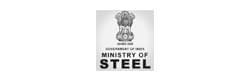 Economic Research Unit, Ministry of Steel Government of India; Member Expert Group on Mines of Niti