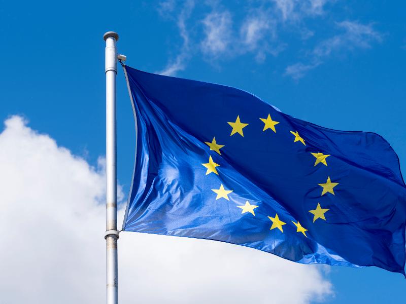 Webinar: EU Food Contact Regulatory Update and Opinion