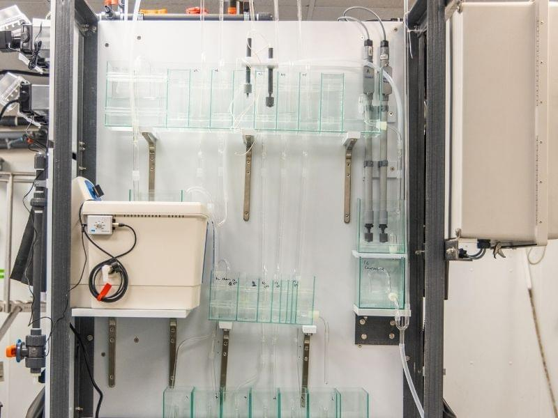 Smithers Invests in New Instrumentation to Support Ecotoxicology Studies