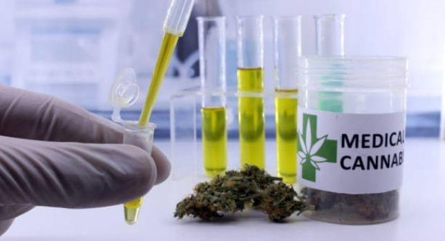Cannabis Testing